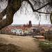 Gradowa Hill, Gdańsk by Ula P