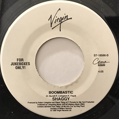 SHAGGY FEATURING RAYVON:IN THE SUMMERTIME(LABEL SIDE-B)