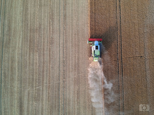 Harvester from above