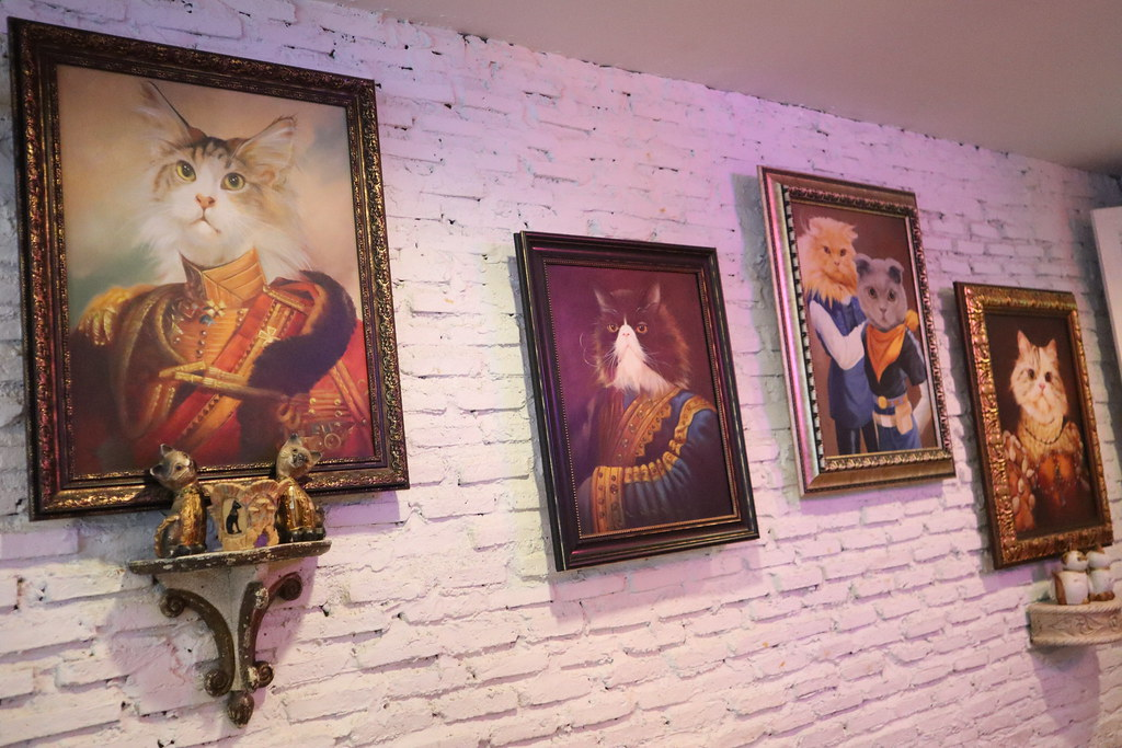 Caturday cat cafe (19)