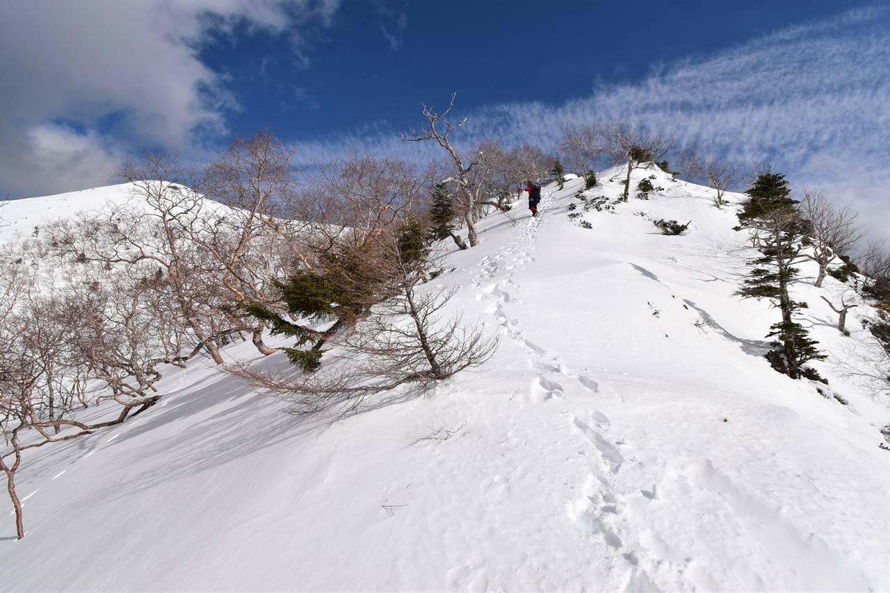 南アルプス烏帽子岳登山道と青空