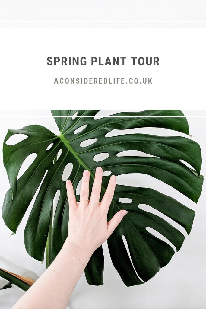 Spring Plant Tour