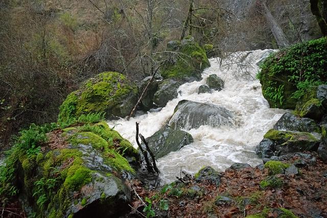 Mountain stream swollen with rain