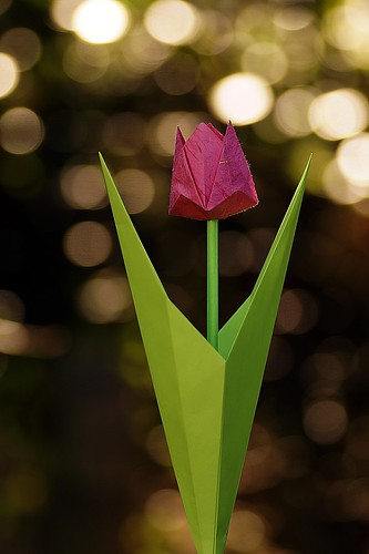An Origami Tulip for Betty (Michael G. LaFosse)