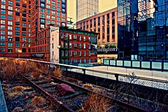 On the wrong side - High Line, New York City