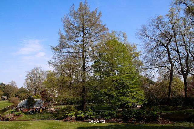 Au jardin des plantes – Nantes | LeyArts photos