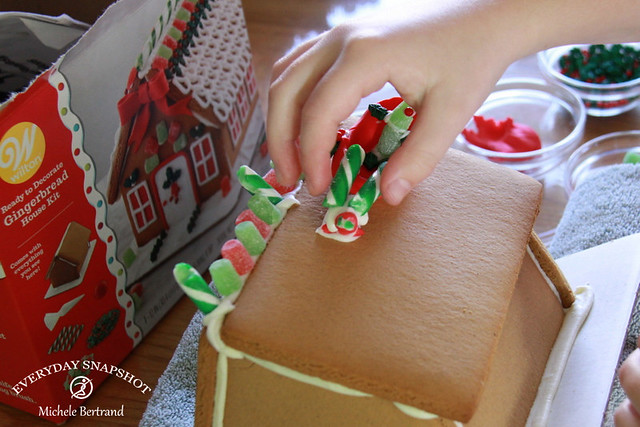 Gingerbread Houses (5)