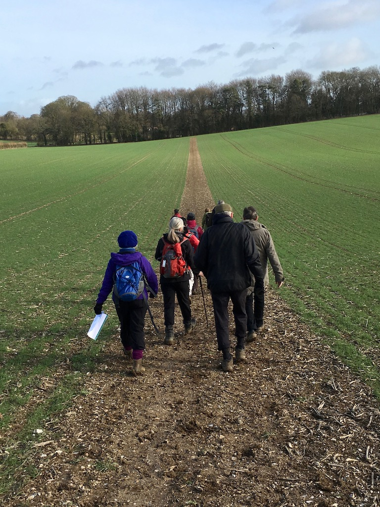 Between Ashe and Deane Overton Circular walk