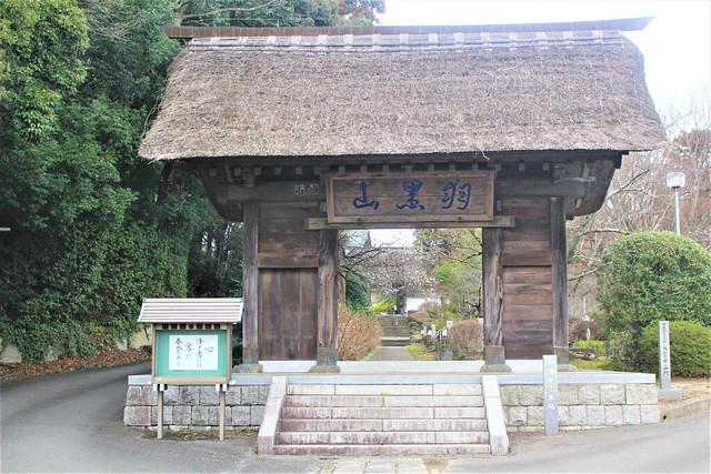 tsuchiuradaishi-gosyuin001