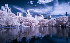 Conservatory Water (Adventures in Infrared)