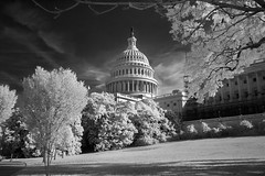 Capitol Building DC (IR)