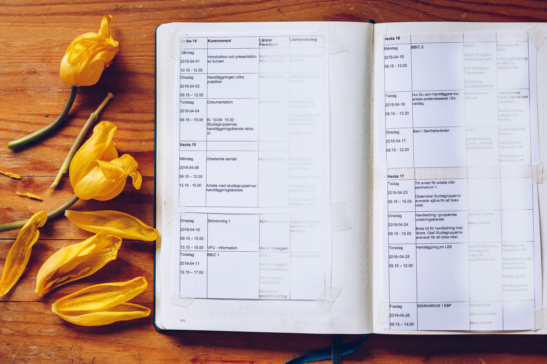 Studieplanering Bullet Journal - reaktionista.se