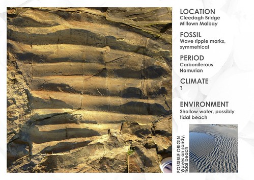 READING YOUR LOCAL LANDSCAPE - FOSSIL - IRELAND - CLARE - CLEEDAGH BRIDGE - RIPPLES