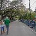 St Patricks Day - New Orleans -2019