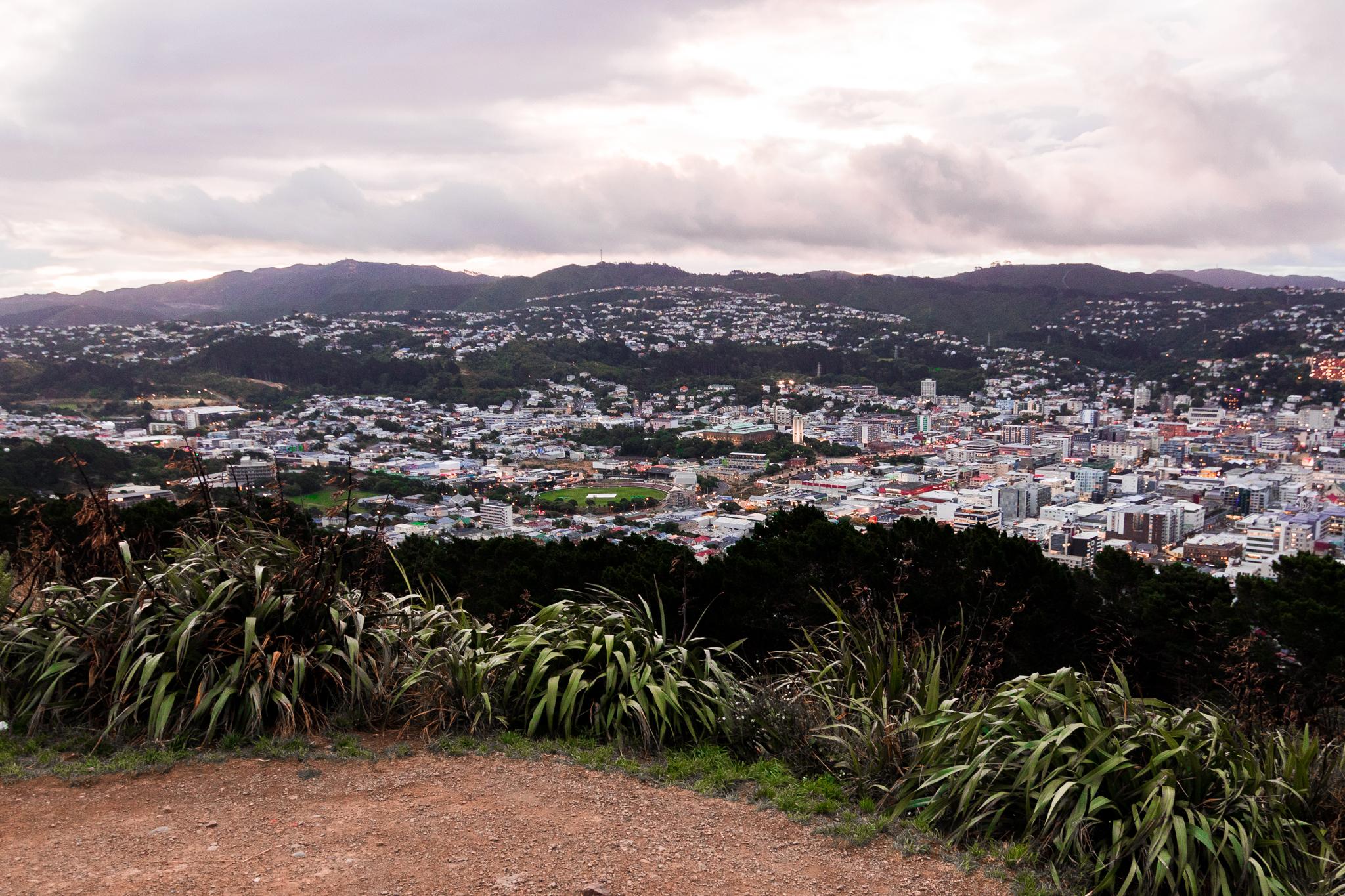 Wellington-34