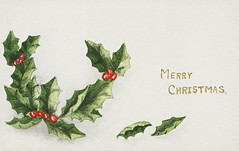 Vintage Christmas holly branch