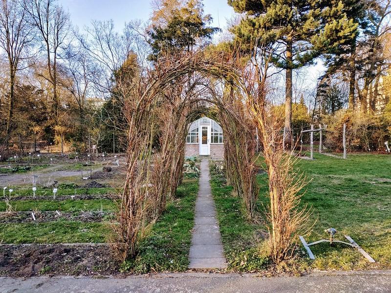 Arco de árboles en el jardín botánico