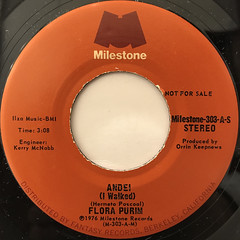 FLORA PURIM:ANDEI(I WALKED)(LABEL SIDE-B)