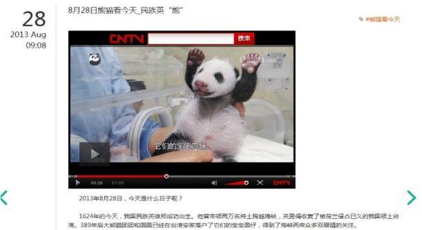 2013年8月28日,在「收復台灣」的鄭成功生日當天,中國官方媒體將圓仔形容為新一代的民族英「熊」[2]。(圖片為作者截取自網路)