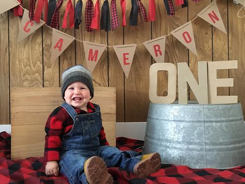 1st birthday lumberjack.