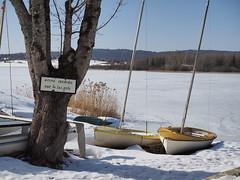 Lac de l'Abbaye