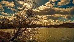 Lumière sur l'étang de Boves