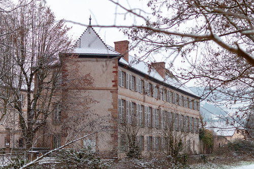 Château des Rohan (Mutzig, France)-106
