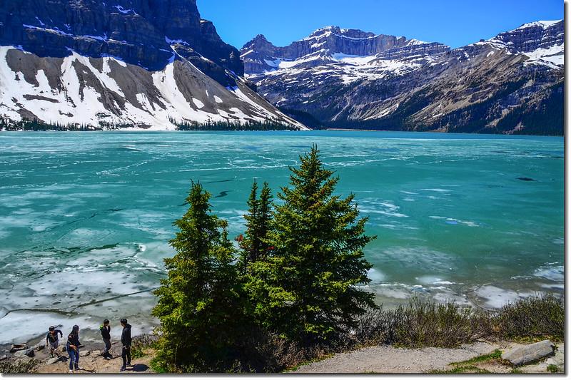 Bow Lake (6)