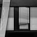 Windows by michael_hamburg69