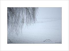 Neige et brouillard - Photo of Linzeux