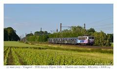 BB 25683 + RRR - Vougeot