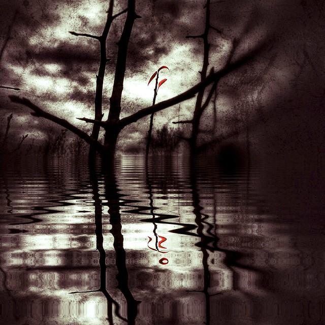 Fake reflection