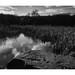 FILM - Carr Forge Dam