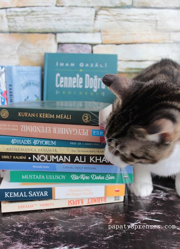 üç aylar kitapları 012