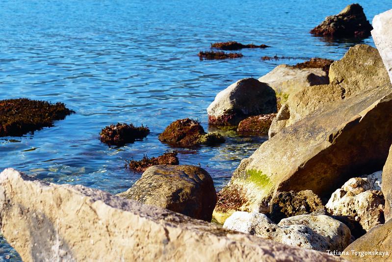 На диком пляже в районе Савина