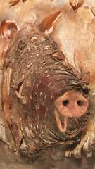 Pig Out! April Fools!