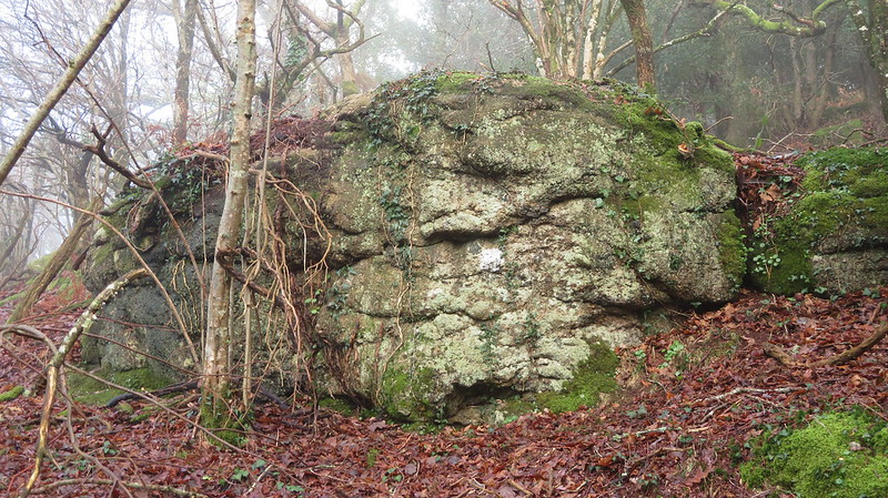 Ash Tor lower outcrop