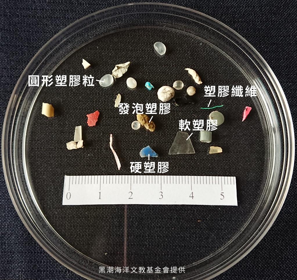 此調查方法將塑膠微粒分為五類,黑潮提供。