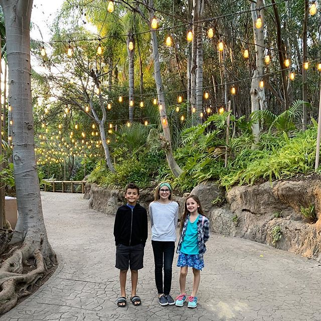 One more recent pic... I love this walkway at the Wild Animal Park. We have been coming here since the kids were toddlers (and since there was only 1!). So many fun zoo and WAP memories from over the years. For now, I decided not to renew my pass as we ju