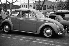 Volkswagen Beetle (Bug)