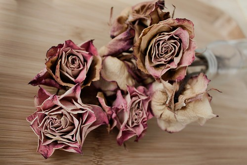 ...all these dried roses...