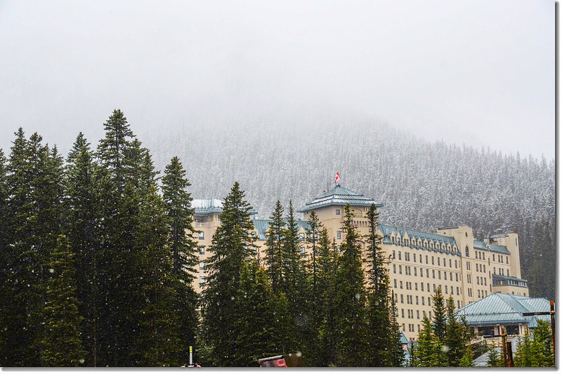 Chateau Lake Louise 1