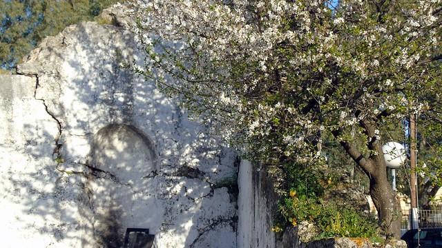 Μαρτιάτικες εικόνες από την πόλη της Λευκάδας