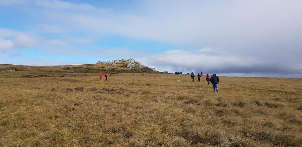 2019-03-12 PRENSA : la expedición en Malvinas recorrió monte tombledowns.