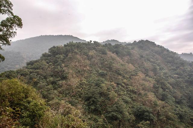 盆貿里山(左後)