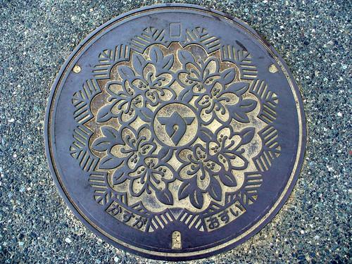 Kasuga Hyogo, manhole cover (兵庫県春日町のマンホール)