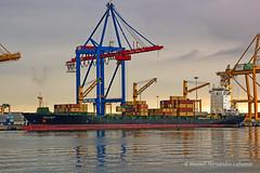 Polish shipyards