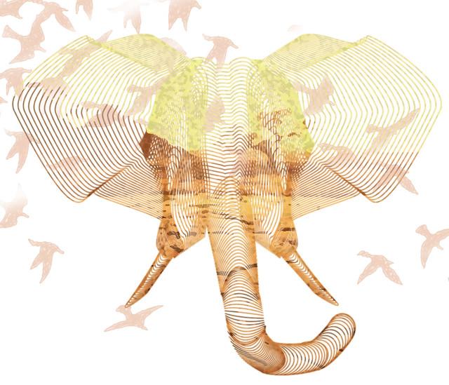 elephant-final
