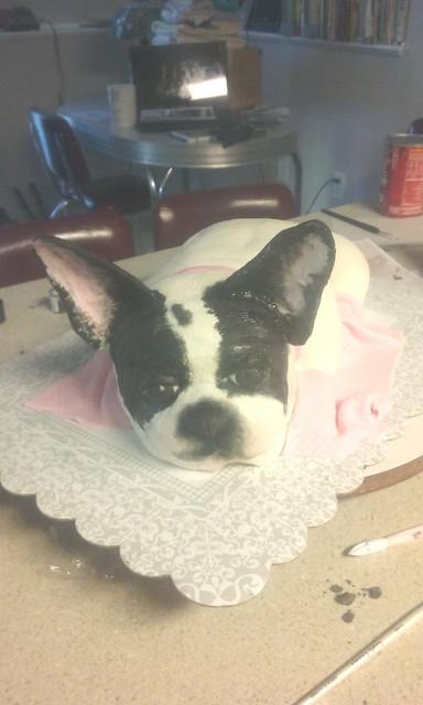 Dog Cake by Pat Kierpaul of Patti's Cake