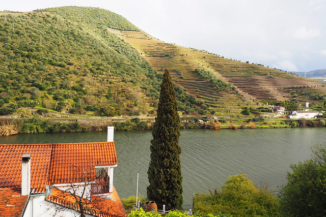 View from room, Quinta de la Rosa, Douro Valley, Portugal